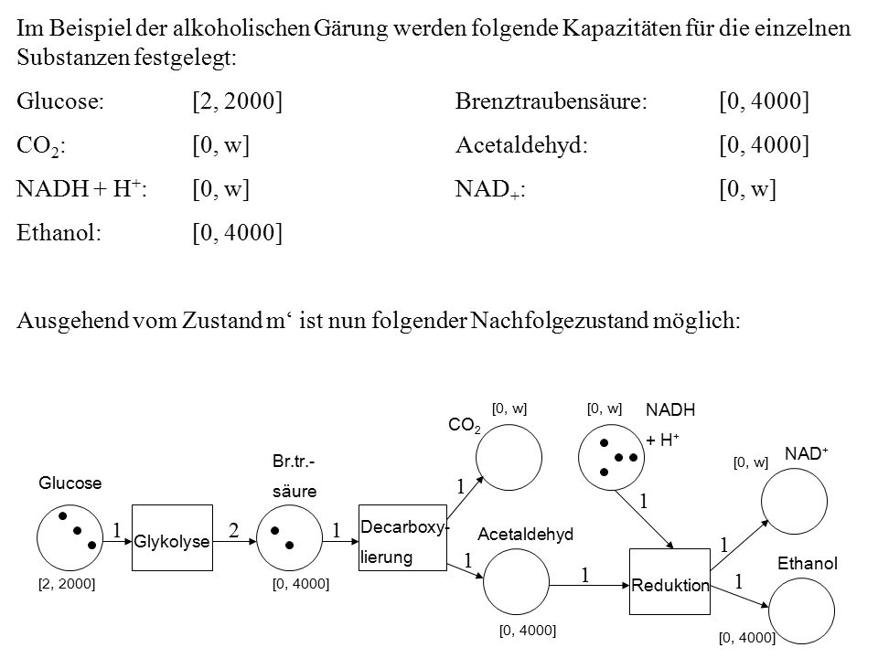 Glucose: [2, 2000] Brenztraubensäure: [0, 4000]